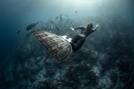 scuba diving in Goa price