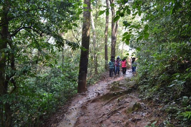 kudremukh trek morning 7