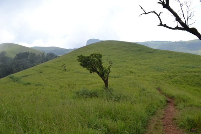 kudremukh trek peak