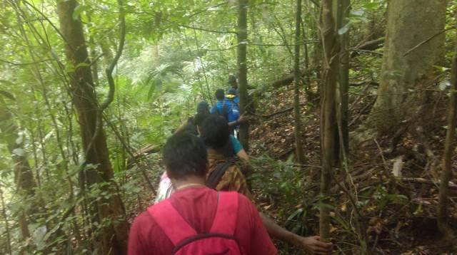 Sharavathi NatureTrail 11
