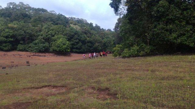 Sharavathi NatureTrail 26