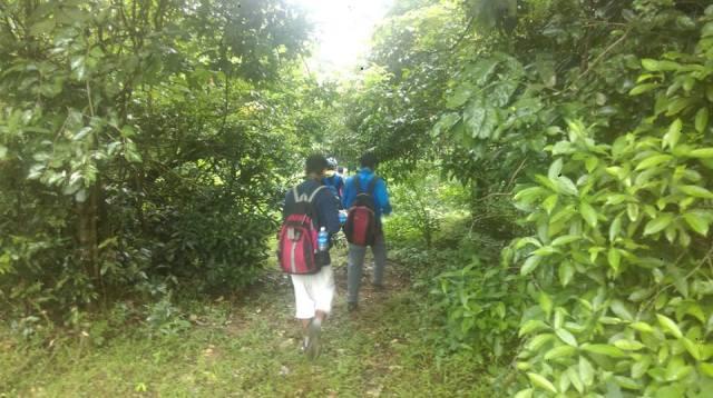 Sharavathi NatureTrail 4