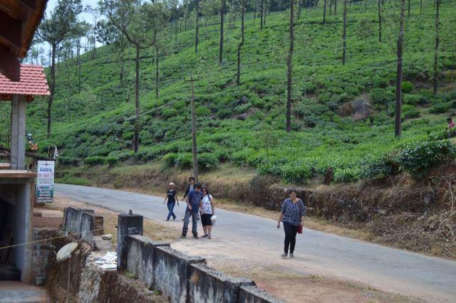 trek to kudremukh india 1