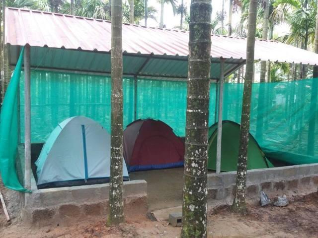 Tadiandamol Trekking camping