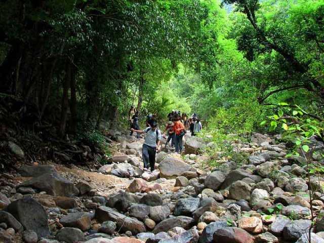 Camping-at-Male-Mahadeshwara-Hills----Karnataka-3