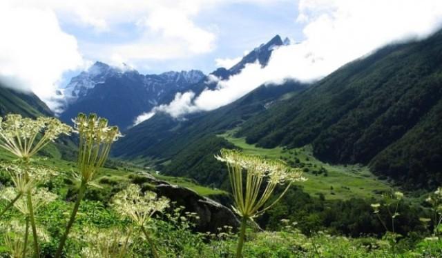 adventure Trek To Valley of Flower india