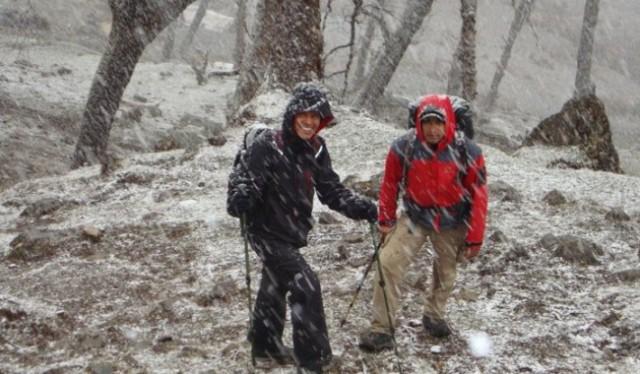 Kuari Pass Trekking Uttarakhand