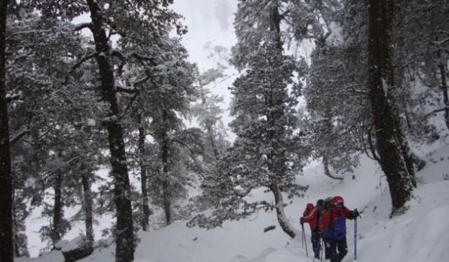 Kuari Pass Trekking
