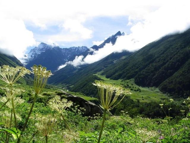Trek-to-Valley-of-Flowers