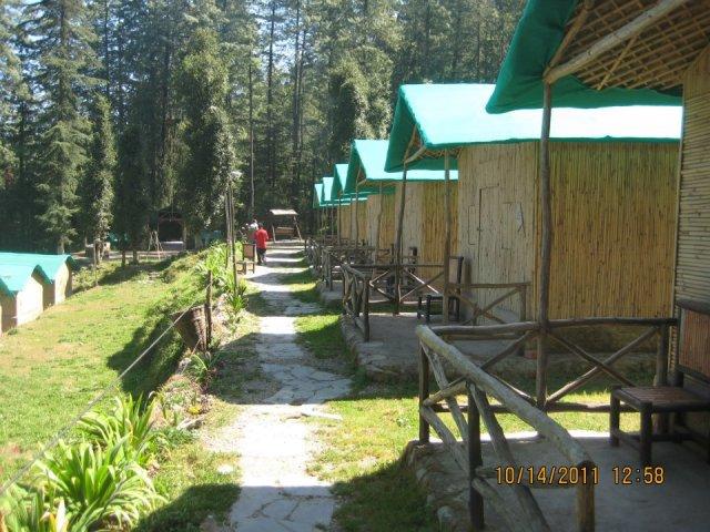 mashobra camp 22
