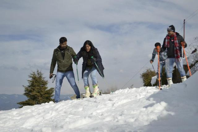 skiing Camping In Dense Forest Of Mashobra 1