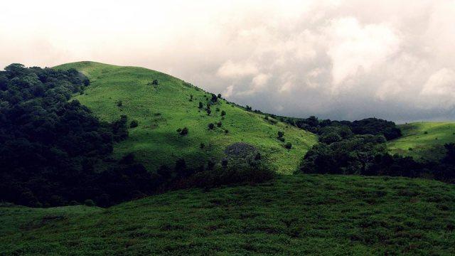 beautiful brahmagiri hills trekking