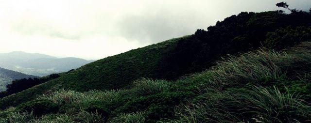 brahmagiri hills trekking 7