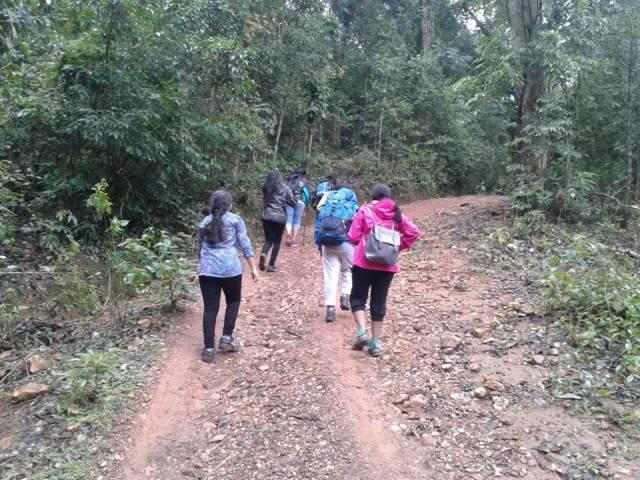 Trekking in Kodachadri 2