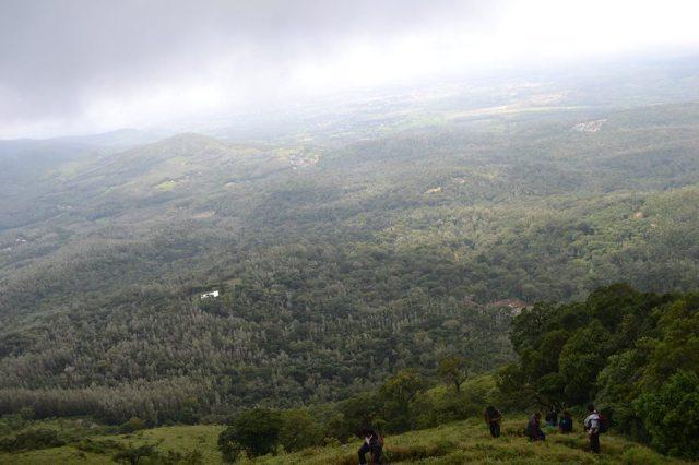 Mullayanagiri Trek 17