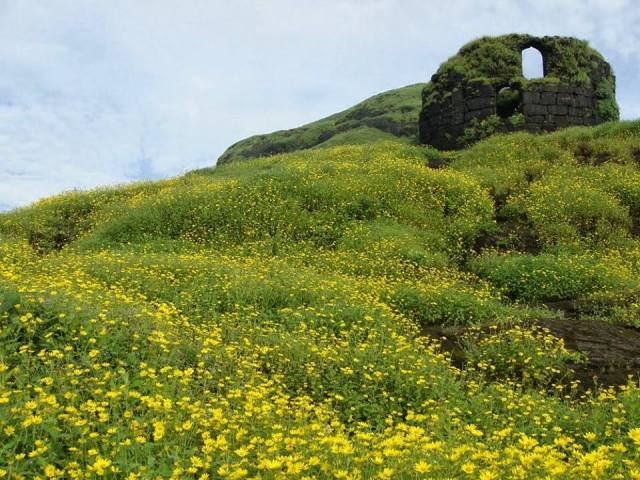 trek-to-ratangad-fort