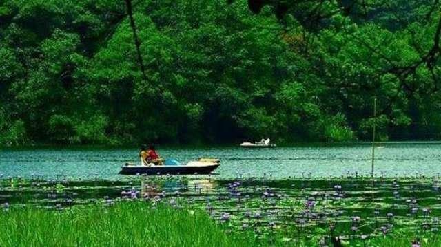 pookode-lake-kerala