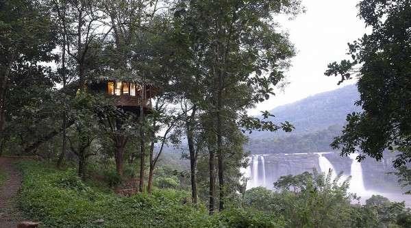 rainforest-resort-athirapally