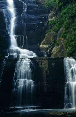 silver-cascade-nilgiris-waterfall-kodaikanal-tamil-nadu